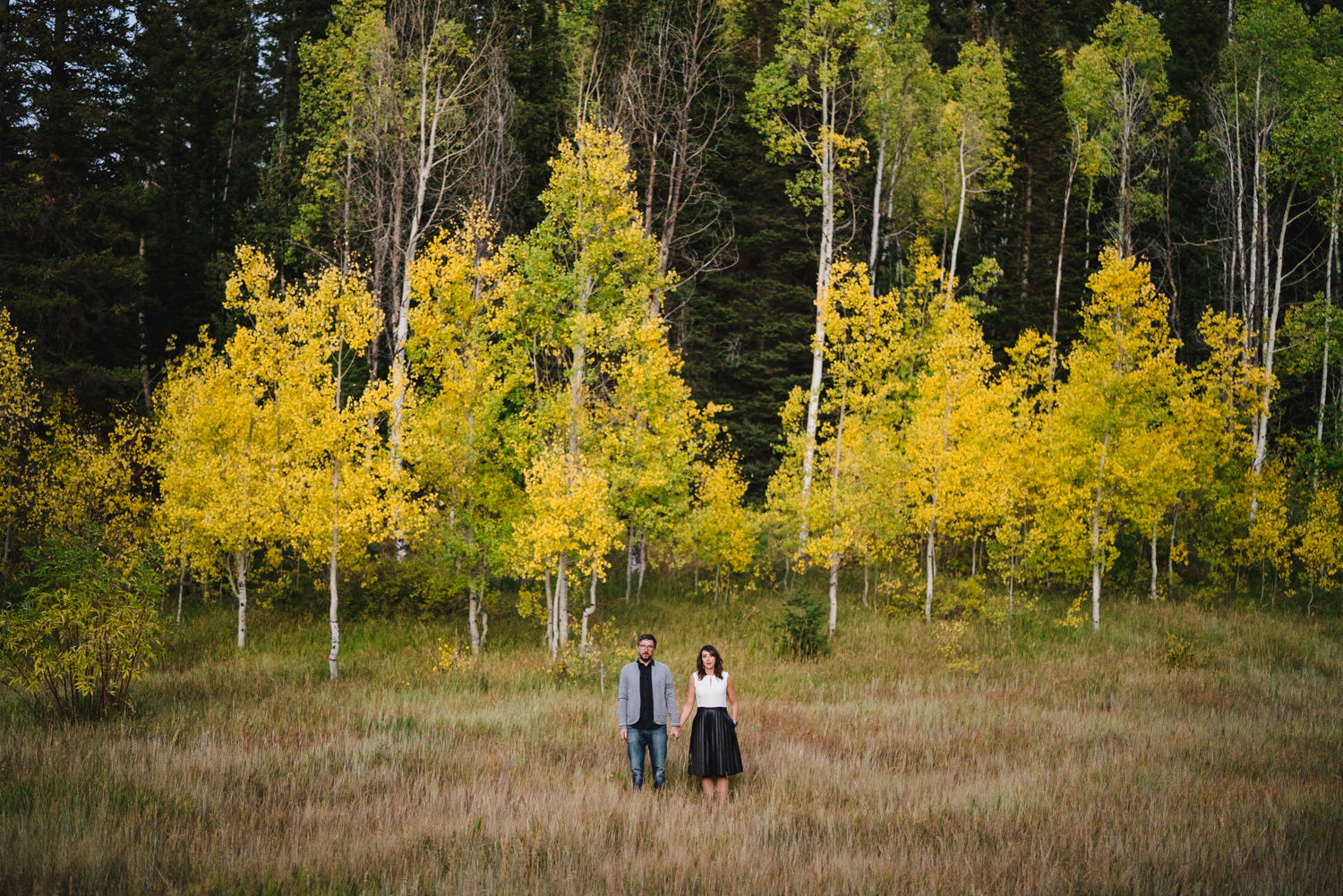 Millcreek Engagement holding hands in a meadow photo