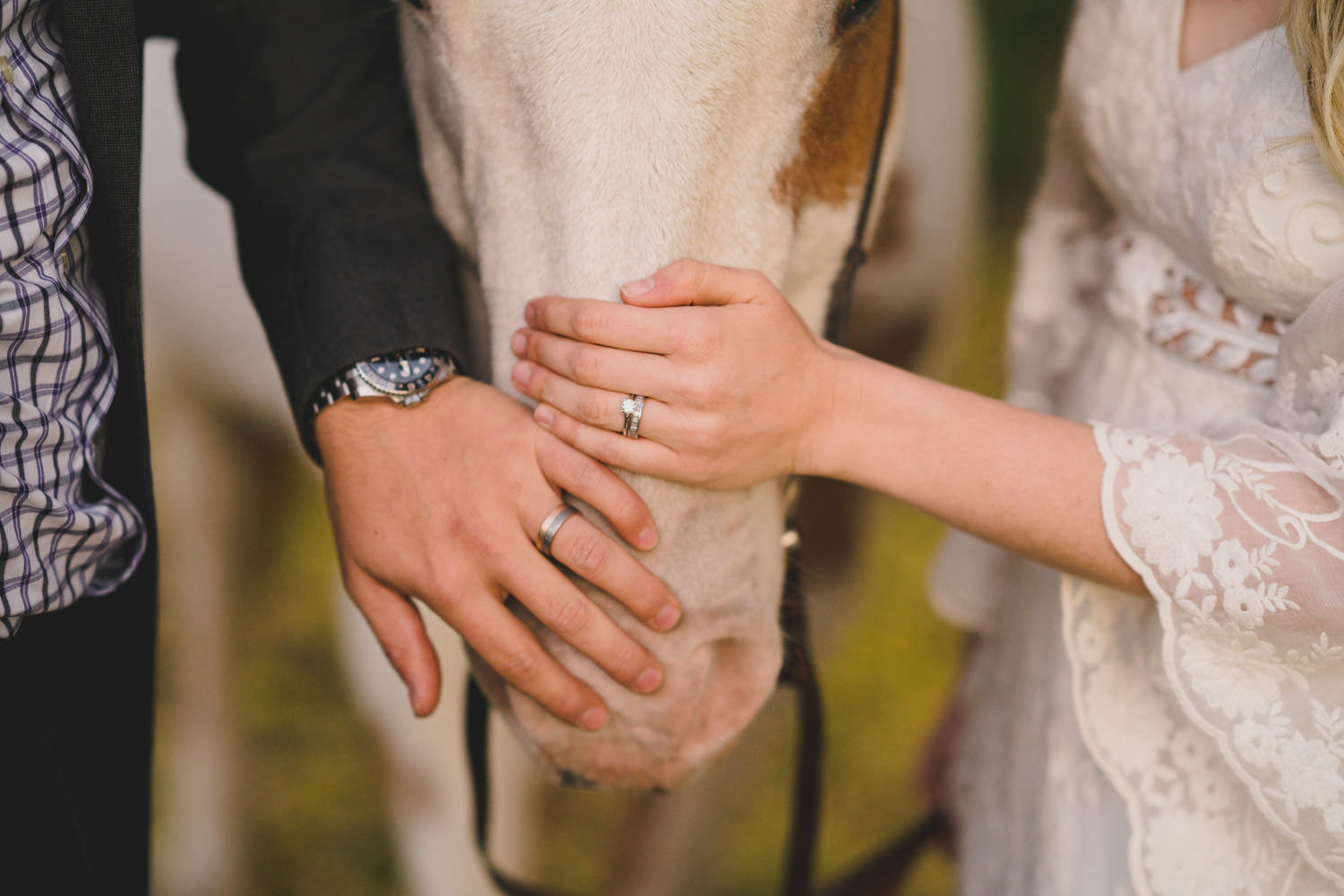 Equestrian bridal session couple hands on horse muzzle photo