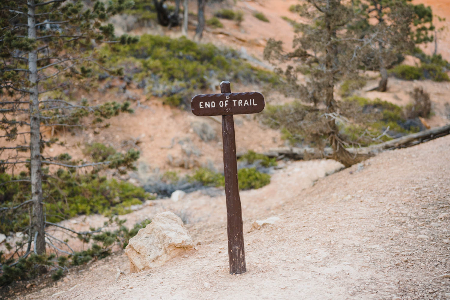Bryce Canyon elopement end of trail sign photo