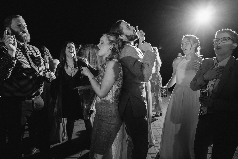 wedding guests celebrating alta