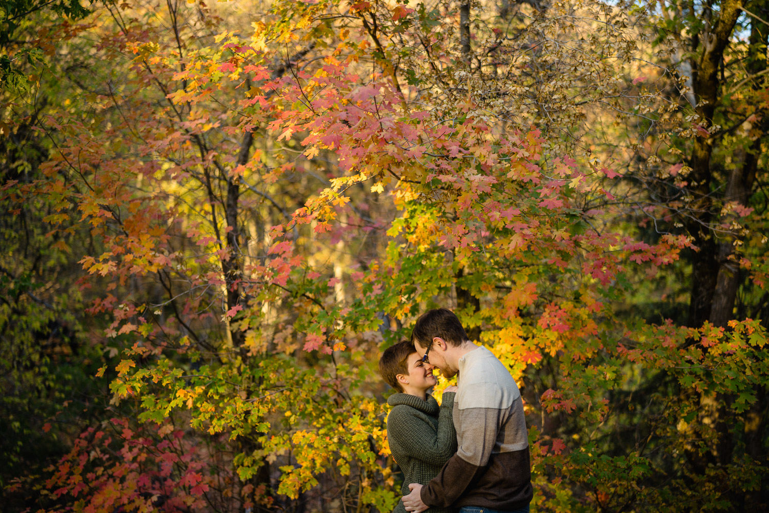 woman and man embrace in fall trees millcreek canyon