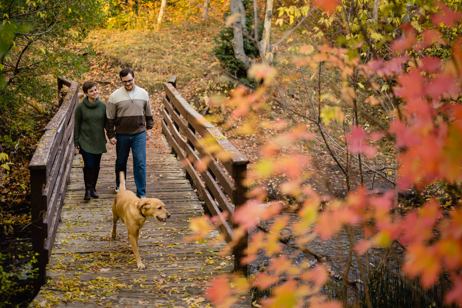 Millcreek Engagement with a Dog on bridge