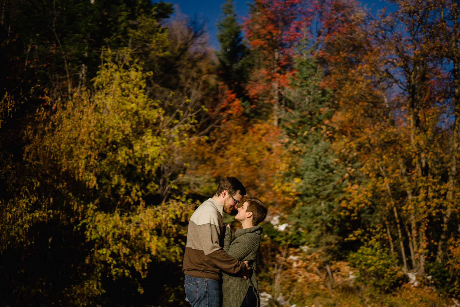 happy couple together with trees under night sky fall colors