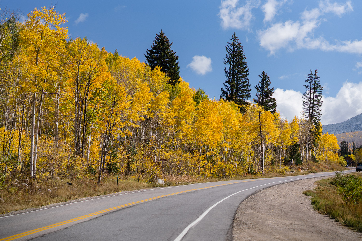 fall trees road to solitude mountain resort wedding