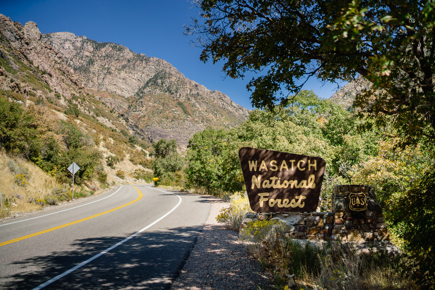 wasatch national forest sign