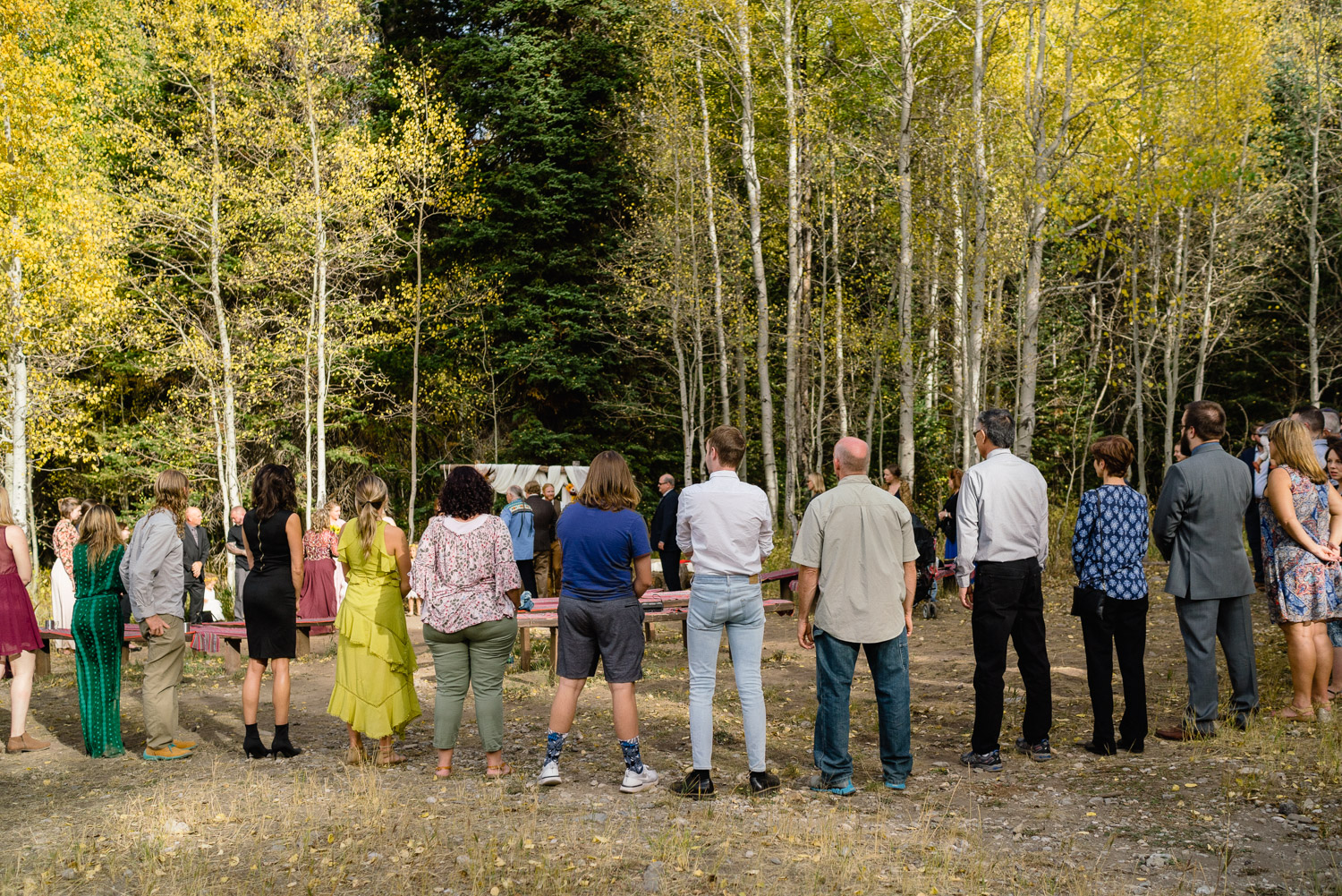 wedding guests in big circle outside aspen trees spruces campground