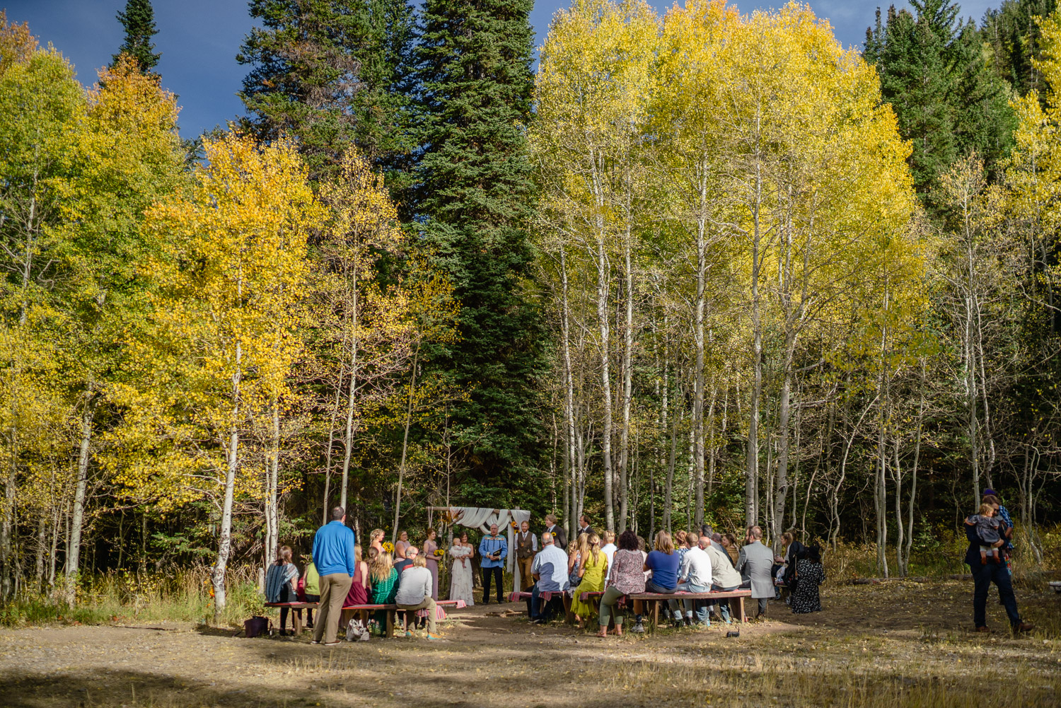 outdoor wedding ceremony aspen trees spruces campground